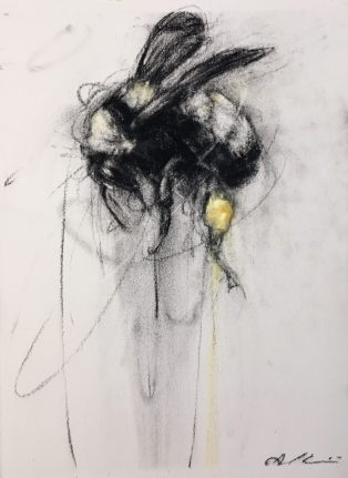 Bumblebee3AprilCoppini