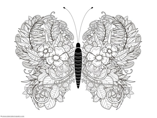 butterfly coloring pages for adults # 17