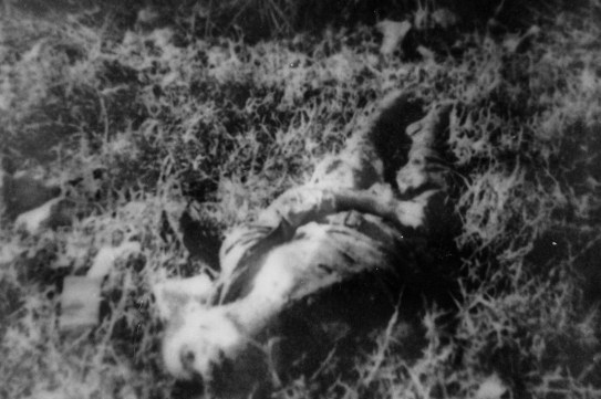 Why these dead men, out of the thousands on Saipan, stood out to the photographer is no longer known.
