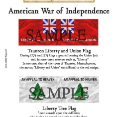 AWI/CA/005 Taunton Liberty and Union Flag, Liberty Tree Flag