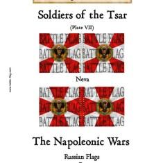 Musketeer Regiment Neva(Plate VII)