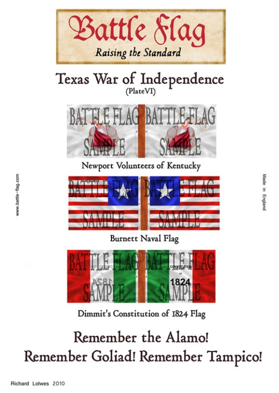 Texas War of Independence (Plate VI)