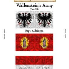 Wallenstein VII