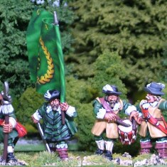 28mm thirty years war swedish Foot command I