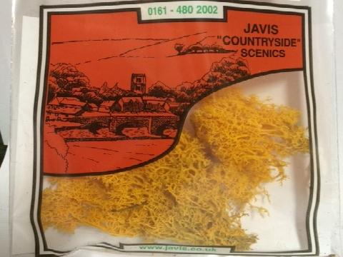 Javis Autumn Gold Lichen