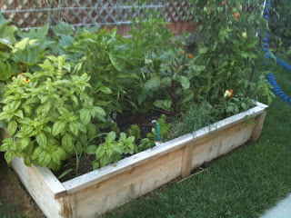 It's time to get the gardens started. You might get your hands DIRTY!