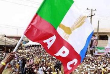 APC lauds peaceful primaries in Edo State