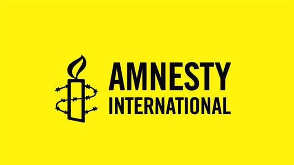 Amnesty International accuses Nigeria's military of burning down entire villages in Boko Haram war
