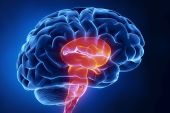 COVID-19 linked to brain damage - New study