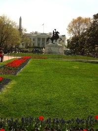 My photography: At Washington DC