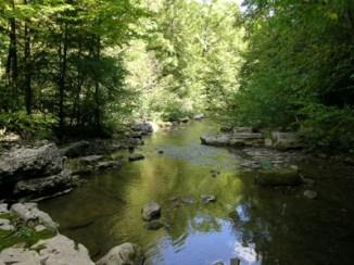 creek2-medium