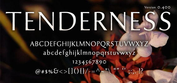 tenderness-typeface-free-high-quality-font-for-download