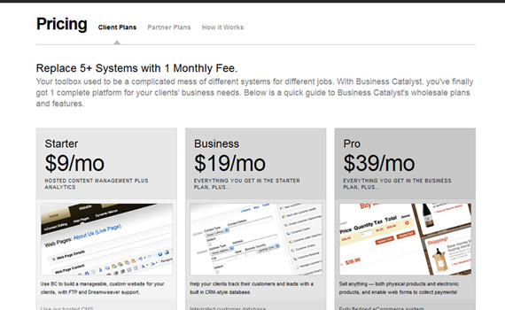 Business-catalyst-pricing-charts-best-examples-tips-inspiration
