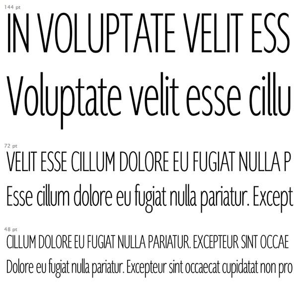 Free-Font-131