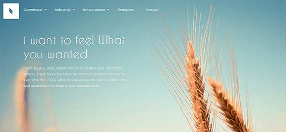 free responive web template html css Organic
