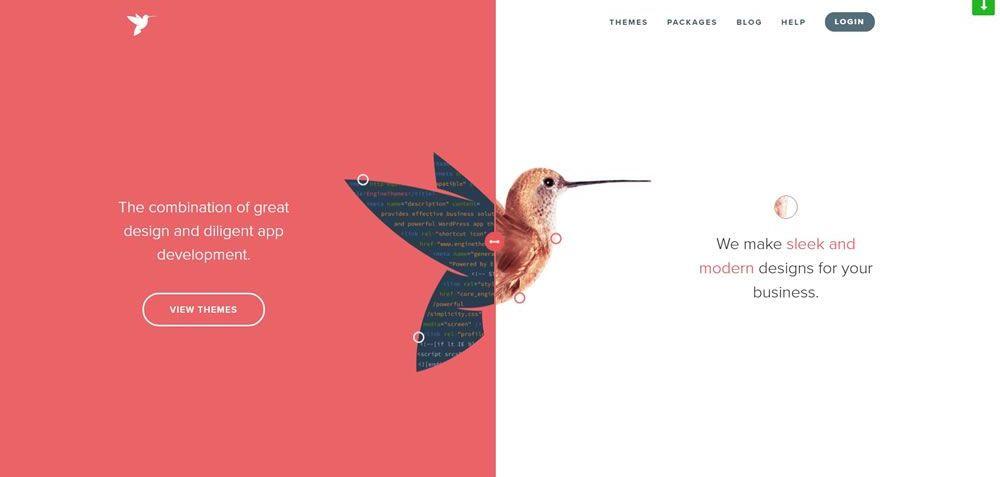 EngineThemes split screen web design layout