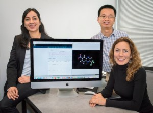 Berkeley Lab scientist Kristin Persson and her electrolyte genome team.