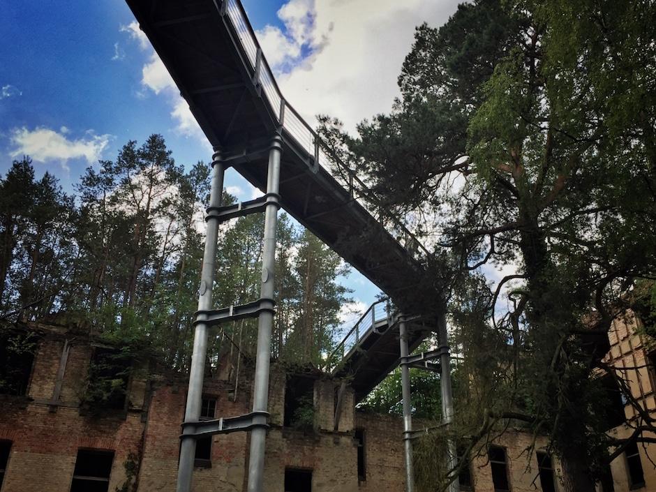 Beelitz-Heilstätten Baumkronenpfad