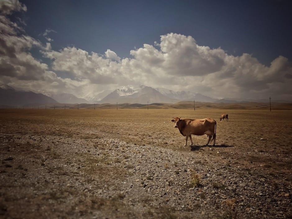 Kirgisistan Wandern Tulparköl