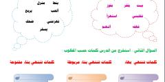 """ورقة عمل لغة عربية لدرس """"الأرنب والسلحفاة"""" الصف الثالث"""
