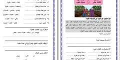 ملف أوراق عمـل اللغة العربية للصف الثالث – الفصـل الثاني