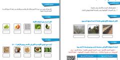 ملف بطاقات التعلم الذاتي لمادة العلوم والحياة للصف الثالث