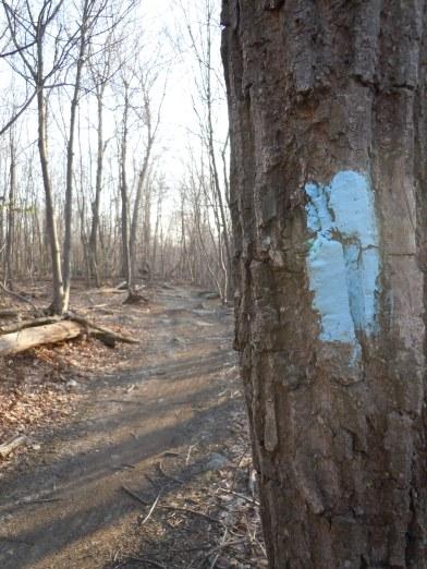 27.2 Mile Catoctin Trail
