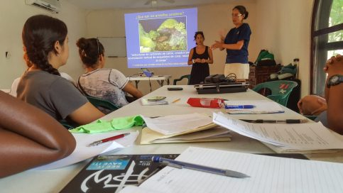 Instructional presentation on how to assess coral reef health