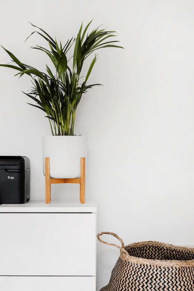 Quick Tips For Eco Friendly Apartment
