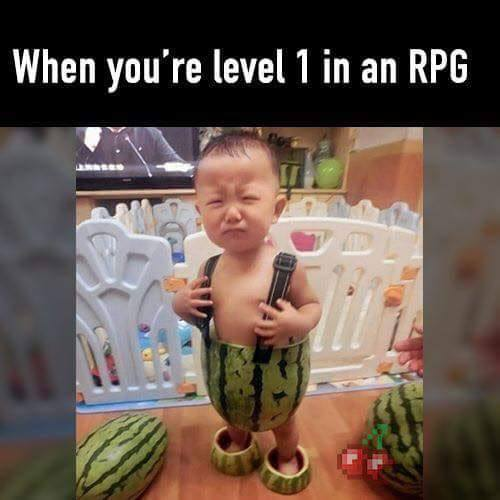Meme gamer Level 1 RPG