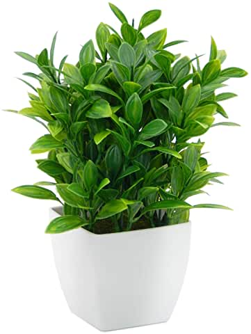 plante artificielle salle de bain