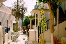 The narrow streets, far too narrow for automobiles, formed a tangled warren of shops and restaurants. Though disorienting, you need only walk downhill to reach the harbor and regain your bearings.