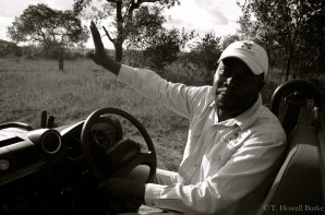 Marvin gives a natural history lesson during a game drive.