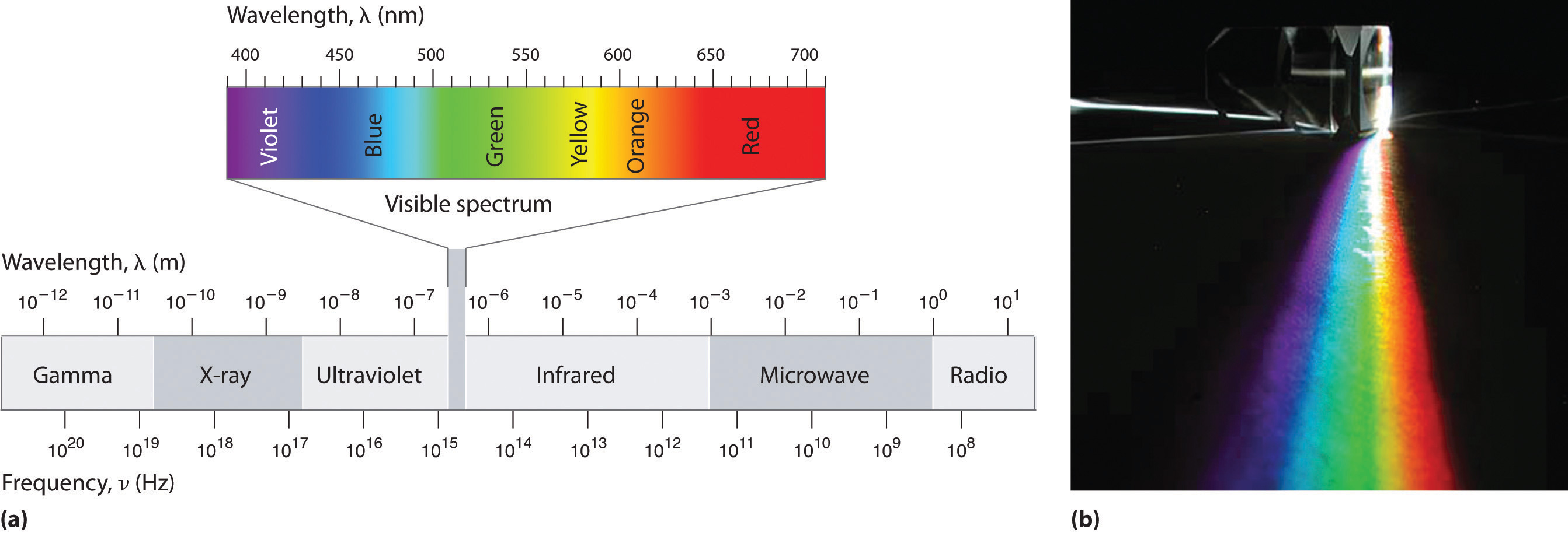 Waves And Electromagnetic Radiation