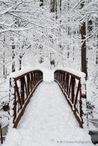 winter2