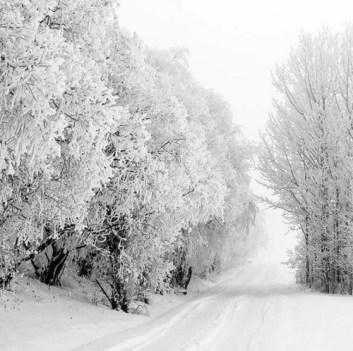 winter9