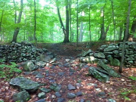 Trail crossing stone wall