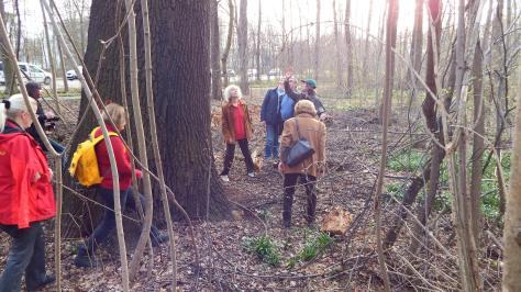Herr Opitz zeigt uns Veränderungen an den Bäumen; Foto: M. Geißler