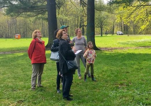 Impressionen von der Waldwanderung 2018; Wo sind die Nester? Foto: M. Geißler