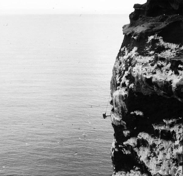 Bjargsig í Drangey kringum 1940-1950.
