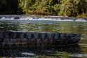 Dugout Canoe at Clarissa Falls