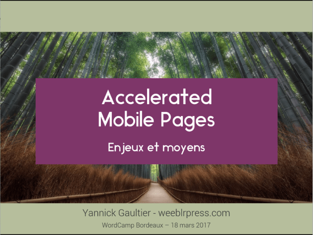 Slides Yannick Gaultier WordCamp Bordeaux 2017 - Accelerated Mobile Pages (AMP) sur WordPress