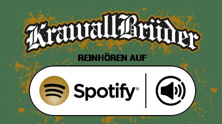 Krawallbrüder auf Spotify hören
