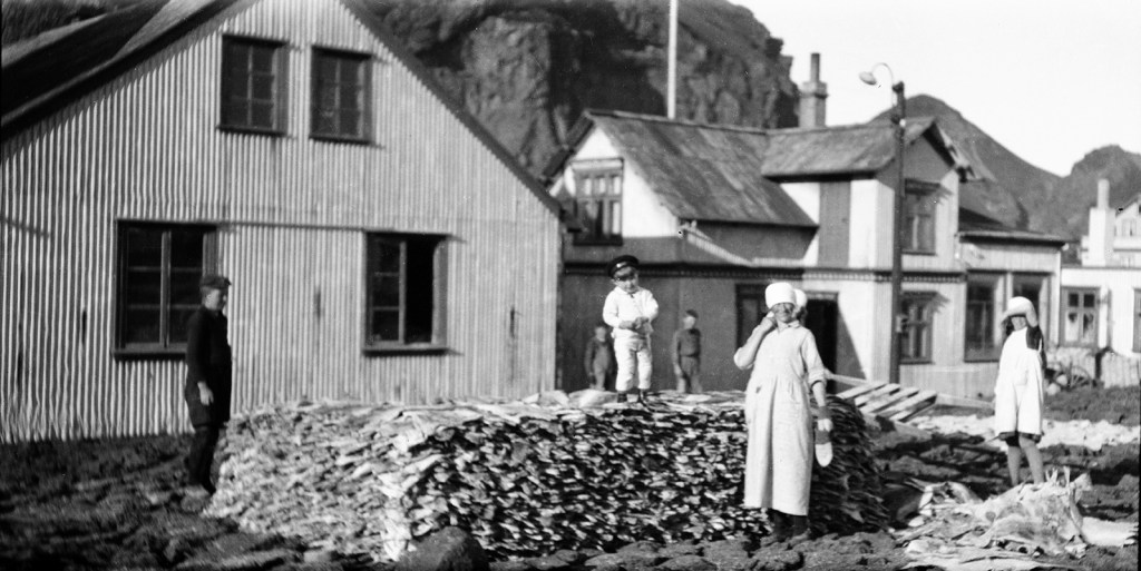 Önnur mynd af starfsfólki við stakkstæði Gísla J. Johnsen, stórkaupmanns. Megnið af starfsfólkinu voru konur. Úr fórum Gísla J. Johnsen, stórkaupmanns.