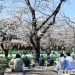 海外のメディア 日本に嫉妬 ロイター・NYタイムス・韓国SBS 『俺たちはロックダウン、日本は花見。ズルい』