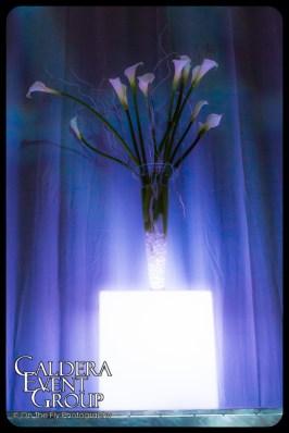 2012-12-08-0089-CEG-Stryker-Xmas