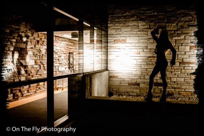 2015-07-28-0103-Macie-After-Dark-exposure