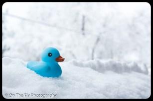 LD-Gerald-Snow-0027-2020-04-16