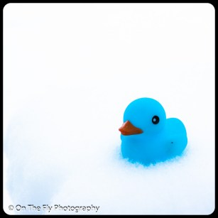 LD-Gerald-Snow-0059-2020-04-16