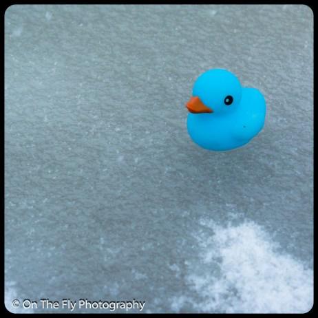 LD-Gerald-Snow-0074-2020-04-16